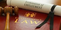 employment law book and gavil